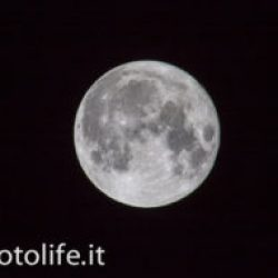 Che Luna